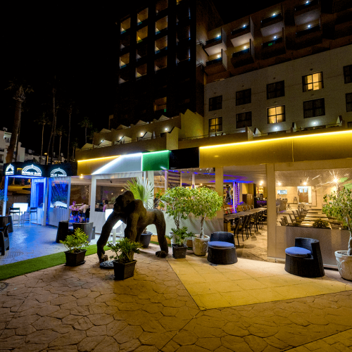 Bombay-Babu.com Torviscas Playa